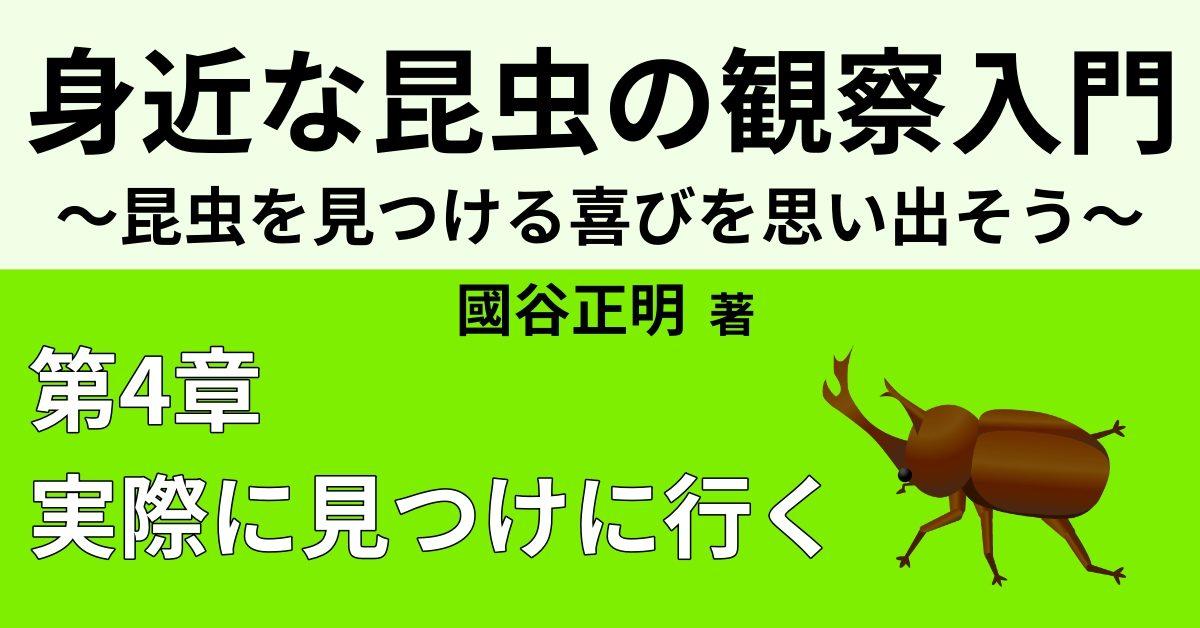 昆虫採集体験レポート③ 【2日目後半 公園】