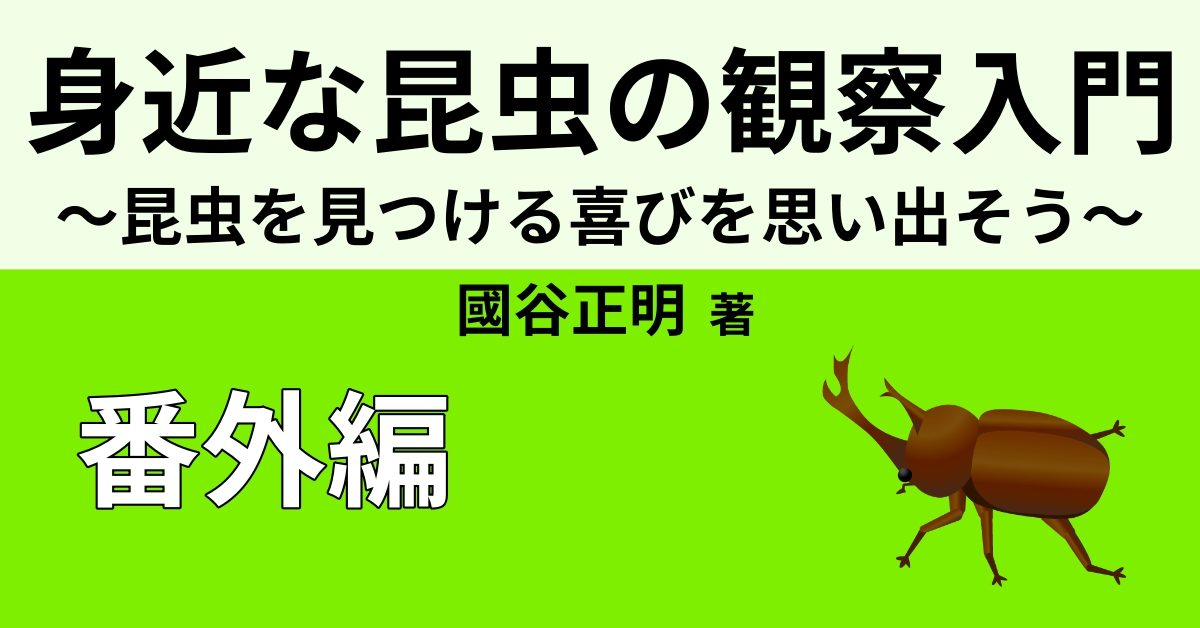 【気持ち悪い昆虫】ランキングベスト5